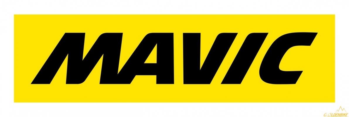 Спица 247мм Mavic v2278201 - COMETE PRO CARBON SL T & UST передняя, сталь